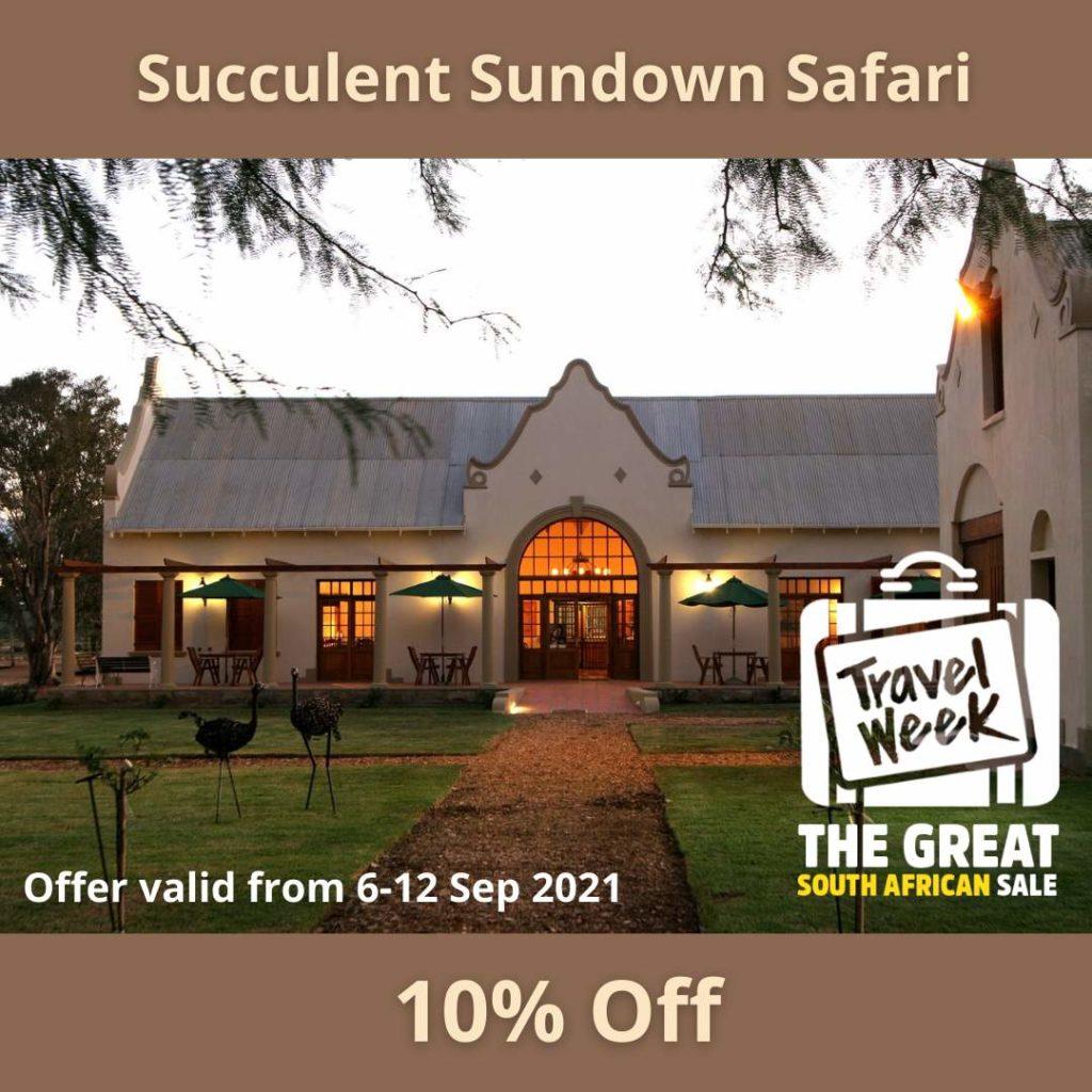 Succulent Safari Nature